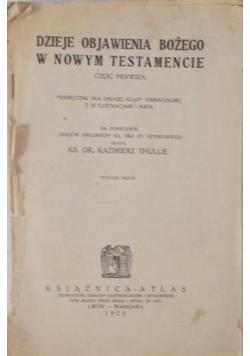 Dzieje objawienia Bożego w Nowym Testamencie, 1925 r.