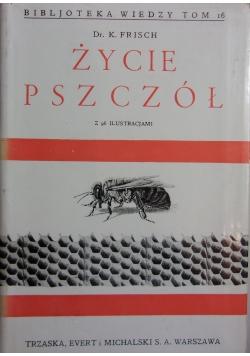 Życie pszczół, 1938r.