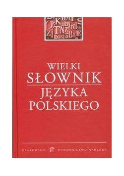 Wielki słownik Języka Polskiego KWN