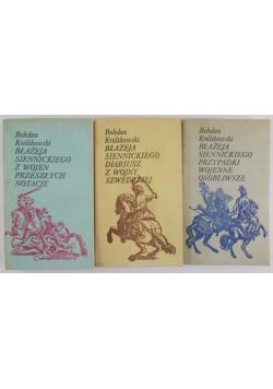 Zestaw 3 książek