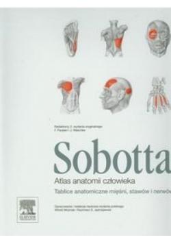 Atlas anatomii człowieka Sobotta