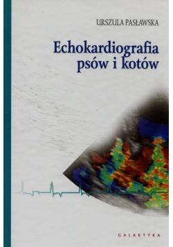 Echokardiografia psów i kotów