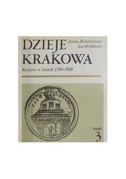Dzieje Krakowa, Tom III
