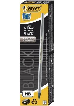 Ołówek Evolution Black (12szt) BIC