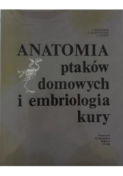 Anatomia ptaków domowych i embriologia kury