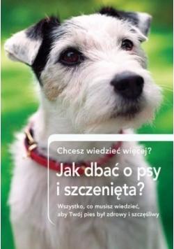 Jak dbrać o psy i szczenięta?