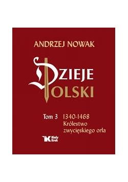 Dzieje Polski. Tom 3