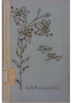Kwiat Marji, 1922r.