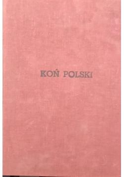 Koń Polski, 10 numerów, 1984/85