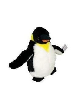 Pingwin Gracjan
