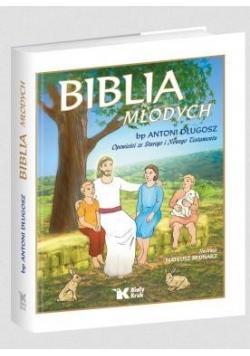 Biblia Młodych. Opowieści ze ST i N Testamentu