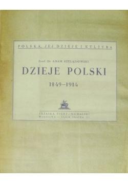Dzieje Polskie 1849-1914, 1926r.