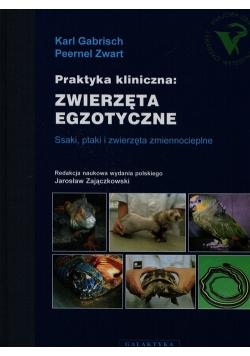 Praktyka kliniczna zwierzęta egzotyczne