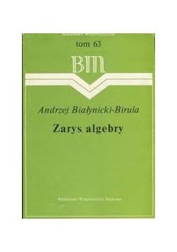 Zarys algebry