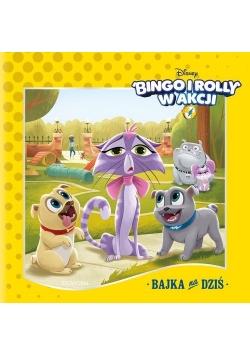 Bingo i Rolly w akcji Bajka na dziś