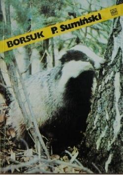 Borsuk