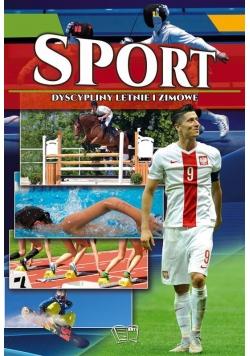 Sport. Dyscypliny letnie i zimowe