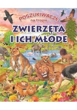 Poszukiwacze na tropie. Zwierzęta i ich młode