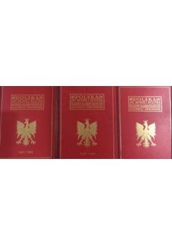 Polska jej dzieje i kultura, , Tom I-III