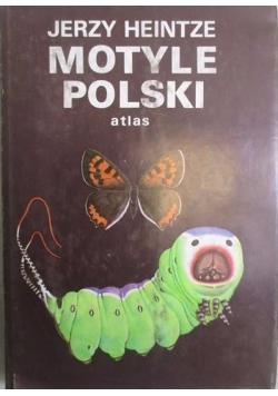 Motyle Polski. Atlas