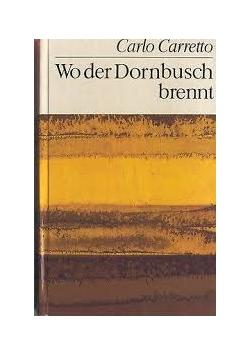 Wo der Dornbusch brennt
