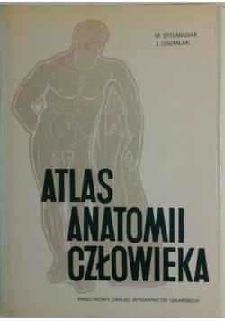 Atlas anatomii człowieka