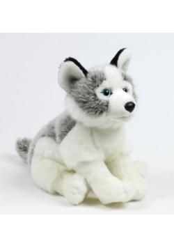Husky 15cm WWF