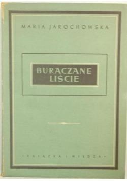 Buraczane liście, 1950 r.