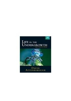 Life in the undergrowth CD