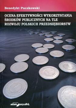 Ocena efektywności wykorzystania środków publicznych na tle rozwoju polskich przedsiębiorstw