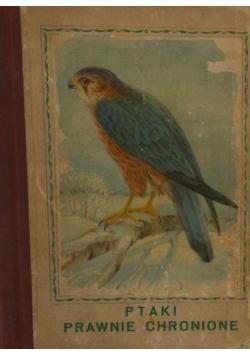 Ptaki prawnie chronione