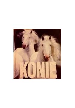 Konie,Nowa