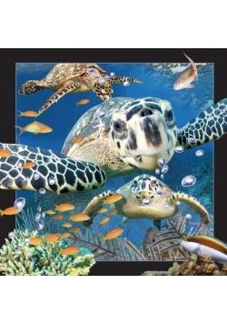 Pocztówka 3D Żółw Morski