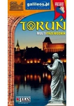 Multiprzewodnik - Toruń