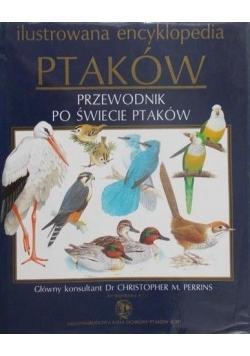 Ilustrowana encyklopedia ptaków, przewodnik po świecie ptaków