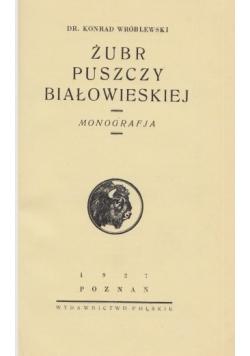 Żubr puszczy Białowieskiej, 1927 r.