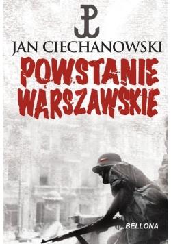 Powstanie Warszawskie BR
