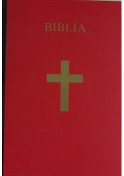 Biblia. Pismo święte starego i nowego testamentu
