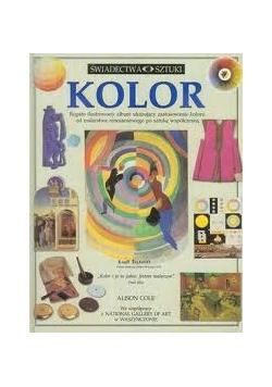 Kolor bogato ilustrowany album ukazujący zastosowanie koloru od malarstwa renesansowego po sztukę współczesną