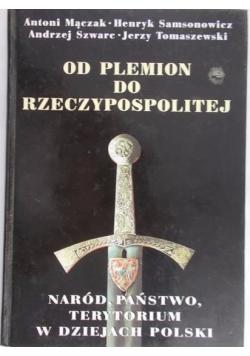 Od plemion do Rzeczypospolitej