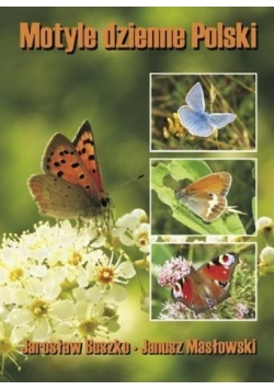 Motyle dzienne Polski TW