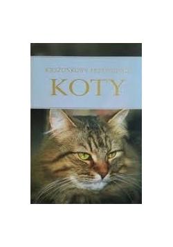 Koty - kieszonkowy przewodnik
