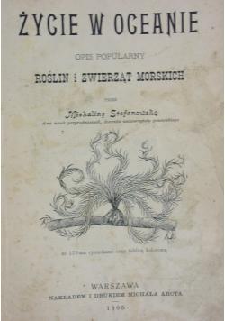 Życie w oceanie, 1905r.