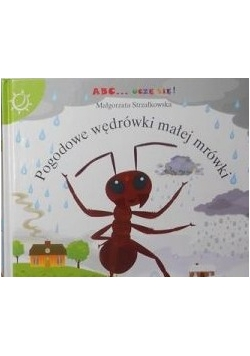 Pogodowe wędrówki małej mrówki
