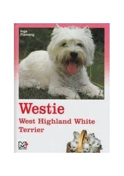 Westie