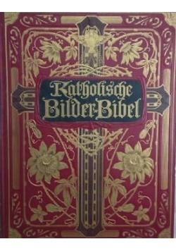 Katholifche Bilderbibel,1909r.