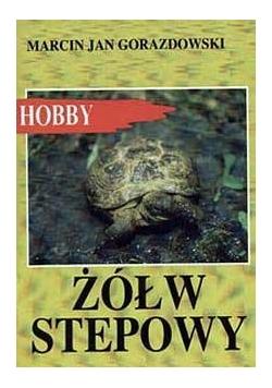 Żółw stepowy