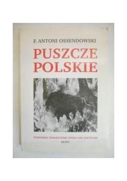 Puszcze polskie