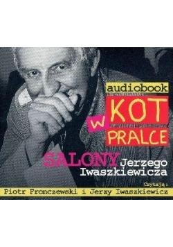 Kot w pralce. Audiobook