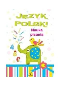 Język polski: Nauka pisania